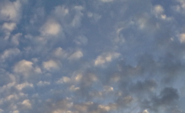 Skywatch Friday - November morning Skywatch Fredag - En november morgen