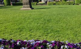 Byparken, Bergen